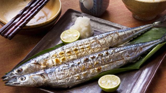 【2020】サンマの値段はいくら?超高値の高級魚になった理由も!2