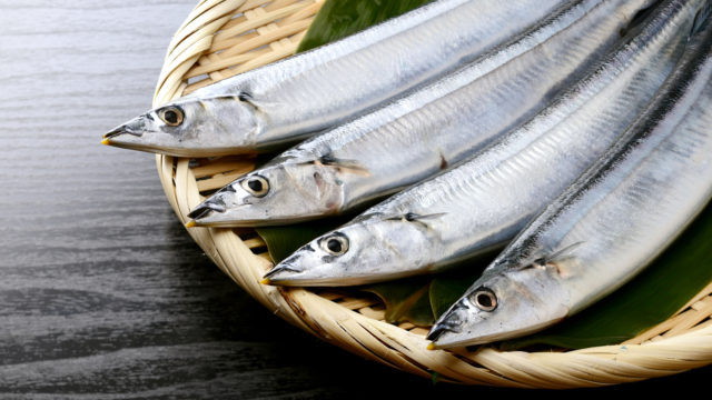 【2020】サンマの値段はいくら?超高値の高級魚になった理由も!