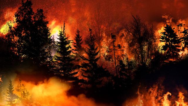 主婦と生活社がなぜ炎上?読者の怒りや不買運動の理由を調査2
