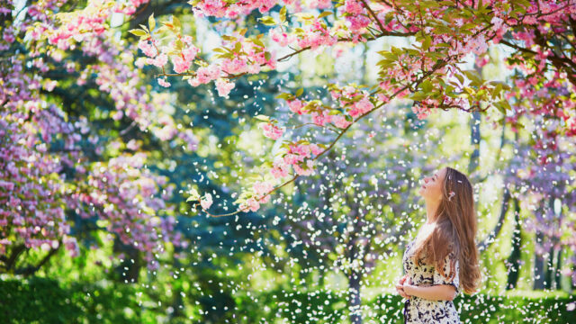 美炎-BIENとは?有吉の壁で鼻吹雪が人気の理由とメンバーを紹介!1